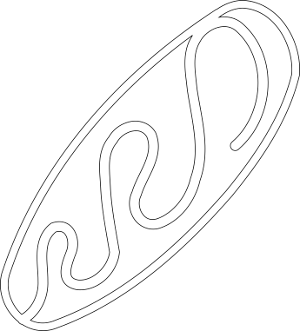 bread_loaf_outline_logo.png